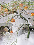 Eisiger Weihnachtsdekor Lizenzfreies Stockfoto