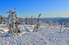 Eisiger Wintermorgen in den Bergen Stockbilder