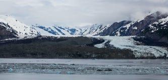 Eisiges Feld in Glacier Bay Lizenzfreies Stockfoto