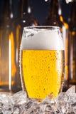 Eisiges Glas Bier mit Eiswürfeln Stockfotografie