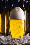 Eisiges Glas Bier mit Eiswürfeln Lizenzfreie Stockfotografie