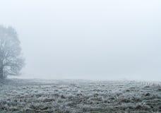 Eisiges Land im Nebel Lizenzfreies Stockbild