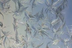 Eisiges Muster lizenzfreies stockbild