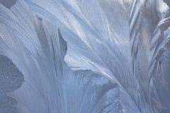 Eisiges natürliches Muster auf Winterfenster Stockfotos