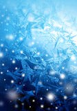 Eisiges Wintermuster mit Schnee Lizenzfreies Stockbild