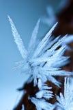Eiskristalle Lizenzfreies Stockfoto