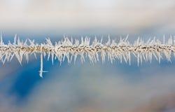 Eiskristalle auf einem Draht Lizenzfreie Stockfotografie