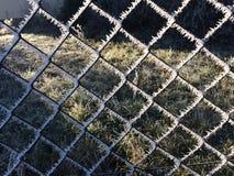 Eiskristalle auf einem Gitter Stockbild