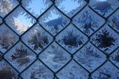 Eiskristalle auf einem Zaun Stockbilder