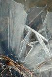 Eiskristalle auf einer Wiese Lizenzfreie Stockbilder