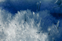 Eiskristallschatten Lizenzfreies Stockfoto