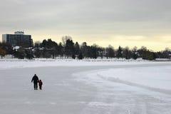 Eislauf auf den Kanal Stockbilder