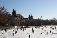 Eislauf in varosligeti mujegpalya, Budapest, Ungarn, 2016 stockfotografie