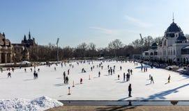 Eislaufleute an der Eisbahn in Varosliget parken am sonnigen Tag Wintersport und entspannt sich Stockbild