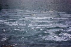 Eisschilder, die hinunter den Detroit River bei Windsor, Ontario-Flussufer schwimmen Stockbilder