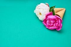 Eistüten mit den weißen und rosa Pfingstrosen blüht über grünem b Lizenzfreie Stockfotos