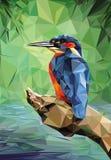 Eisvogel niedrig Poly lizenzfreies stockfoto