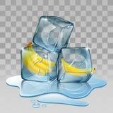 Eiswürfel mit Banane Stockbild