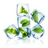 Eiswürfel mit grünen tadellosen Blättern Stockbilder