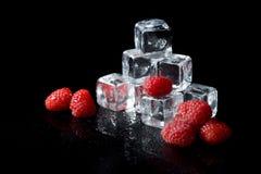 Eiswürfel und -kirschen getrennt auf Schwarzem lizenzfreie stockfotografie