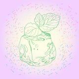 Eiswürfel und tadellose Blätter Stockbilder