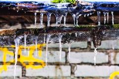 Eiszapfen auf altem Sinkkasten des Hauses mit Backsteinmauer Stockbild