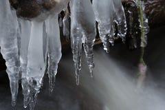 Eiszapfen auf dem Wasser Lizenzfreies Stockbild
