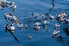 Eiszapfen auf einem See Stockfoto