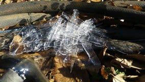 Eiszapfen aus den Grund lizenzfreie stockfotografie