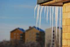 Eiszapfen, der in der Sonne glänzt Lizenzfreie Stockfotografie