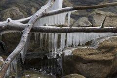 Eiszapfen, die über dem See hängen Stockfotos