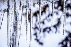 Eiszapfen, die vom Dach hängen Lizenzfreies Stockbild