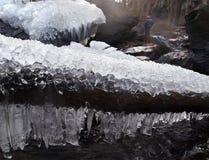 Eiszapfen-Felsen-Bäume Stockfotos