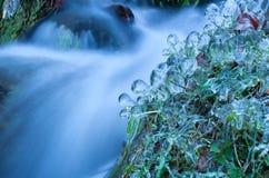 Eiszapfen und gefrorenes Wasser auf Gras durch Fluss Stockbild