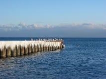 Eiszapfen und Seemöwen auf einem Pier Stockfotos