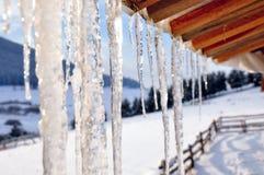 Eiszapfennahaufnahme Lizenzfreie Stockbilder