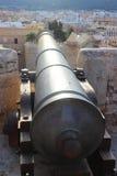 Eivissa служат карамболем, который стоковые изображения