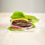 Eiwitdiehamburger in sla wordt verpakt Stock Foto