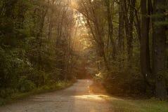 Eixo da luz solar na estrada de transporte imagens de stock
