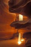 Eixos da garganta superior do entalhe do antílope da luz Imagens de Stock