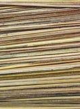 Eje del coco de la hoja Imagen de archivo libre de regalías