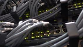 EJE del interruptor de red y LAN de los cables de Ethernet en datacenter El vídeo contiene pequeñas vibraciones metrajes