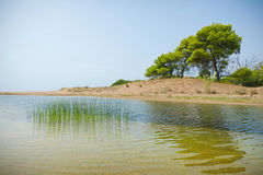 Ejection of Kaiafas lake into the sea, Greece. View of the ejection of Kaiafas lake into the sea. Beach with sand dunes and a Pine tree forest, western stock photography