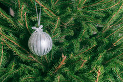 Ejecución blanca de la bola de cristal en el árbol de navidad fotos de archivo libres de regalías