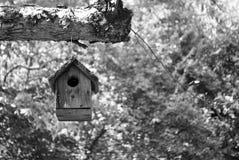 Ejecución blanco y negro de la pajarera de un árbol Fotografía de archivo