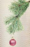 Ejecución de la bola de la Navidad en rama del abeto Imágenes de archivo libres de regalías