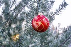 Ejecución de la bola del ` s del Año Nuevo en una rama de un árbol de navidad en el bosque Imagenes de archivo