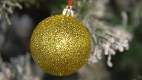 Ejecución de la bola de la Navidad en árbol de abeto almacen de video