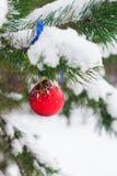 Ejecución de la bola de la Navidad en las ramas cubiertas con nieve Fotografía de archivo