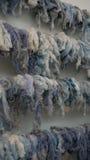 Ejecución de las lanas Imagenes de archivo